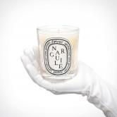 diptyque Narguile Scented Candle 2   kvapioji žvakė   190 g   Crème de la Crème